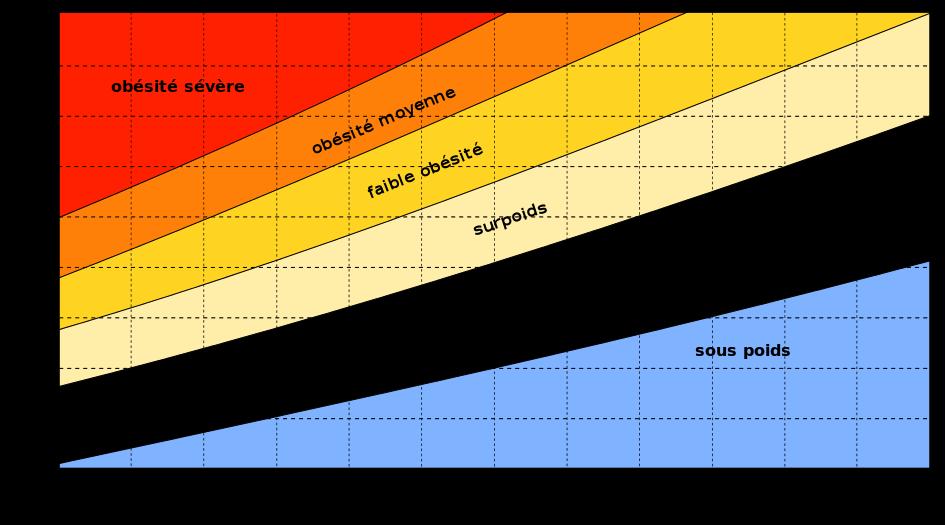poids et IMC (indice de masse corporelle)